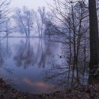 У реки на рассвете :: Сергей Корнев