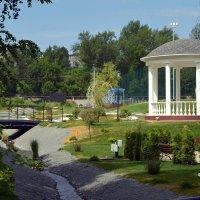 Городской парк. :: Анатолий