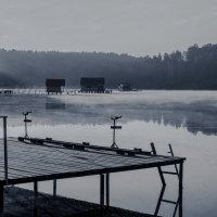 Рассвет над водой... :: Евгений Осипов