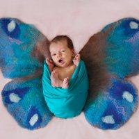 бабочка :: Марина Макарова
