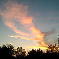 Вечерний небесный пейзаж :: Татьяна Королёва