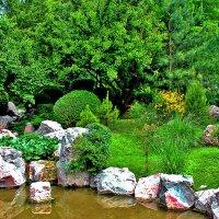 В японском саду :: Светлана