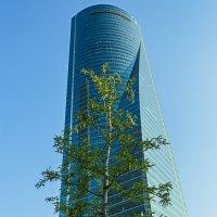 Cuatro Torres Business Area (Испания,Мадрид) :: Игорь