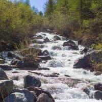 Горная река :: Николай