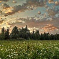 Закат над лесом :: Лара Симонова