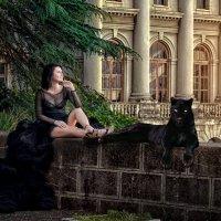 Чужая душа – потемки, ну а кошачья – тем более. :: валерия -resolute-