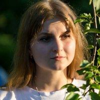 Портрет девушки :: Александр Синдерёв