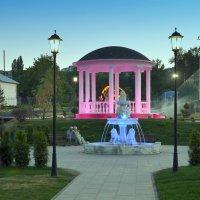 В парке. :: Анатолий