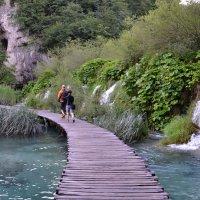 Плитвицкие острова ( Хорватия) :: tamara *****