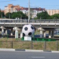 Футбольный мяч :: Лариса Вишневская