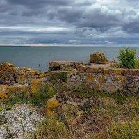 Estonia 2018 Southern Saaremaa :: Arturs Ancans