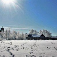 Под зимним солнцем. :: Николай Масляев