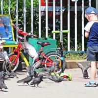 дети и голуби :: Лера