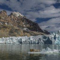 перед ледником :: Георгий А