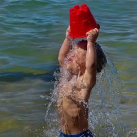 да здравствует лето...... :: Владимир Матва