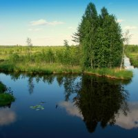 Голубая река :: Нэля Лысенко