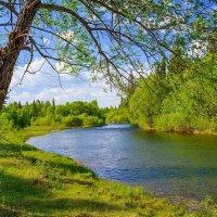 Пейзаж :: Nikolay Svetin