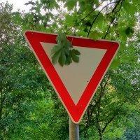 """Новая модификация дорожного знака """"Уступи дорогу"""" :: Валерий Розенталь"""