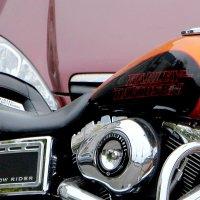 Harley-Davidson :: Надежд@ Шавенкова