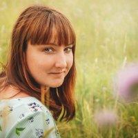 В лугах, где пахнет медом :: Вера Сафонова