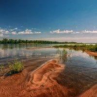 На июльском солнцепёке и тень коршуна — благо. :: Андрей Лепилин