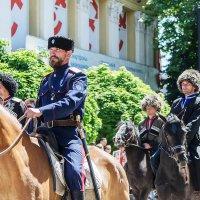 Едут наши казаки... :: Galina Sajnikova