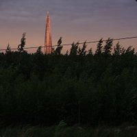 ветреный вечер :: sv.kaschuk