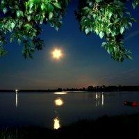Среди безмолвия ночного... :: Нэля Лысенко
