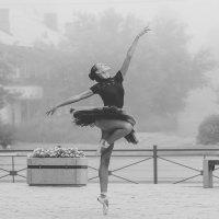 Утренний балет :: Роман