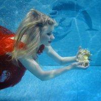 Под водой :: Михаил Новиков