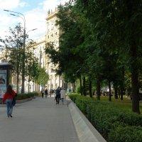 Прогулки по Москве. :: Елена