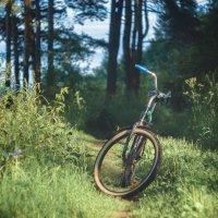 Один вечер из жизни велосипеда :) :: Алексей le6681 Соколов