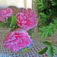 Розовые розы :: Лариса