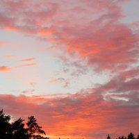 Дачные закаты :: Алла Захарова