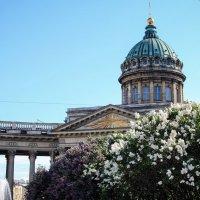 Казанский собор :: Эля Чикина