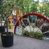 Летний сад. Боскет «Птичий двор» :: Наталья Герасимова