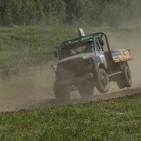 Газончик - попрыгунчик... :: Дмитрий Сиялов