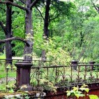 Старый мост  5 :: Сергей