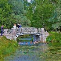 Лето у мостика... :: Sergey Gordoff