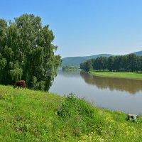 Река Юрюзань. :: Наталья