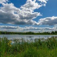 Летний день на озере. :: Александр Орлов