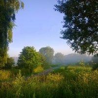 Сегодня утро было добрым :: Татьяна Лобанова
