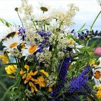 Букетик полевых цветов :: Алла ZALLA