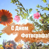 С днёт Фотографа :: Виктор Шандыбин