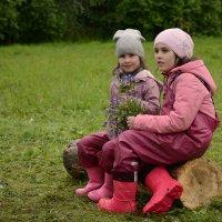 Букет для мамы.. :: Андрей + Ирина Степановы