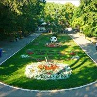 В городском саду! :: Надежда