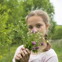 Полевые цветы. :: Светлана Бурлина