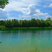 Зелёное лето... :: Galina Dzubina