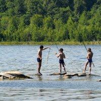 Лето. Озеро. Рыбалка.... :: Дмитрий Петренко