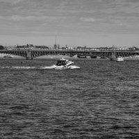 Литейный мост :: Сергей Лындин